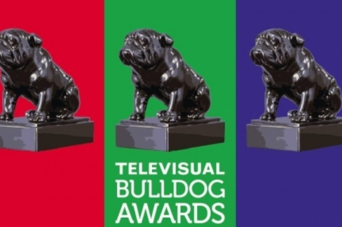 Peep Show and Toast of London in the Televisual Bulldog Awards
